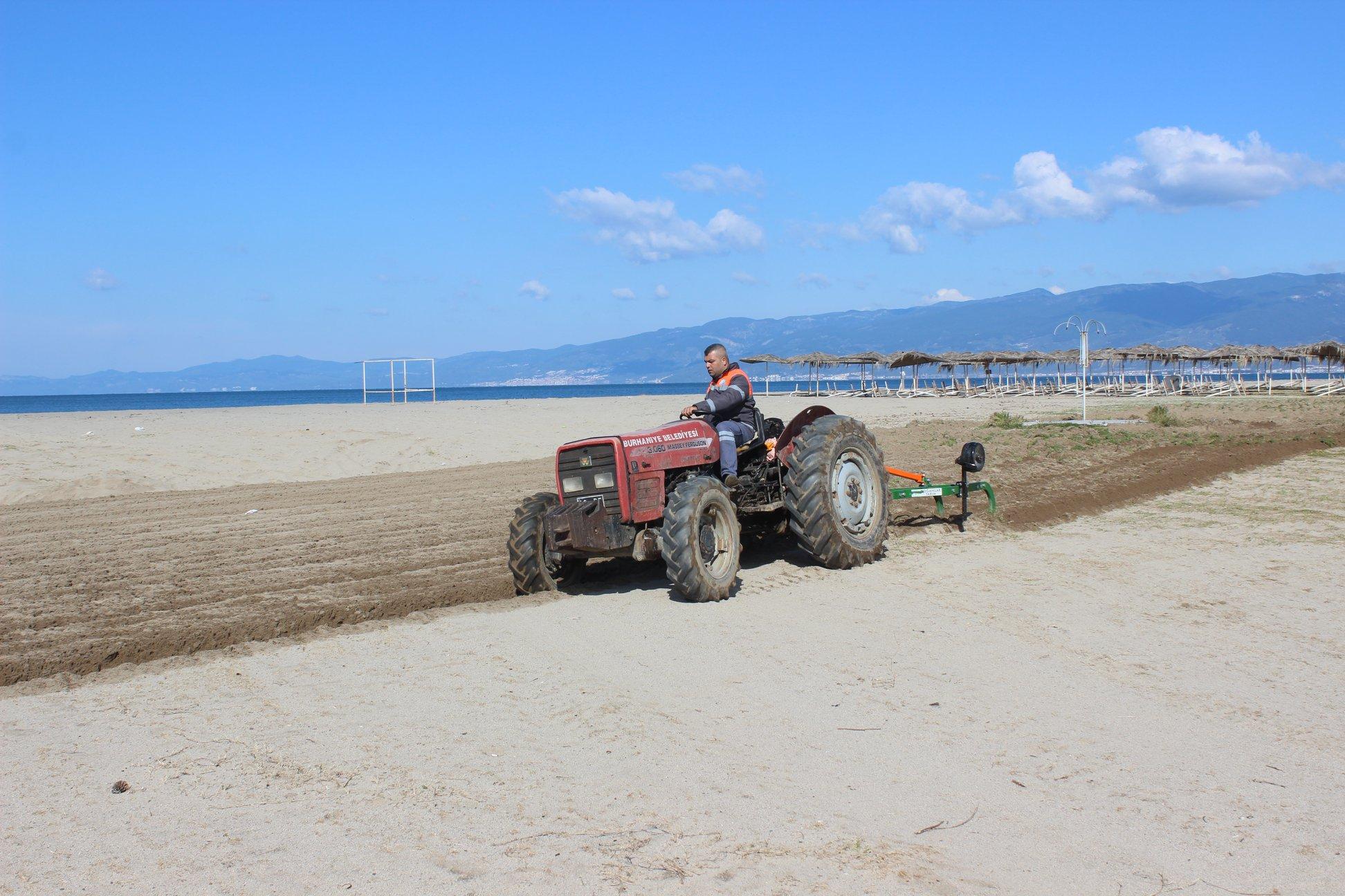 Burhaniye Plajları Düzenleniyor